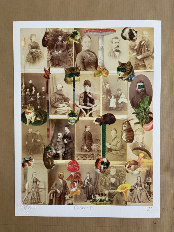Treasured moments print by DiSect