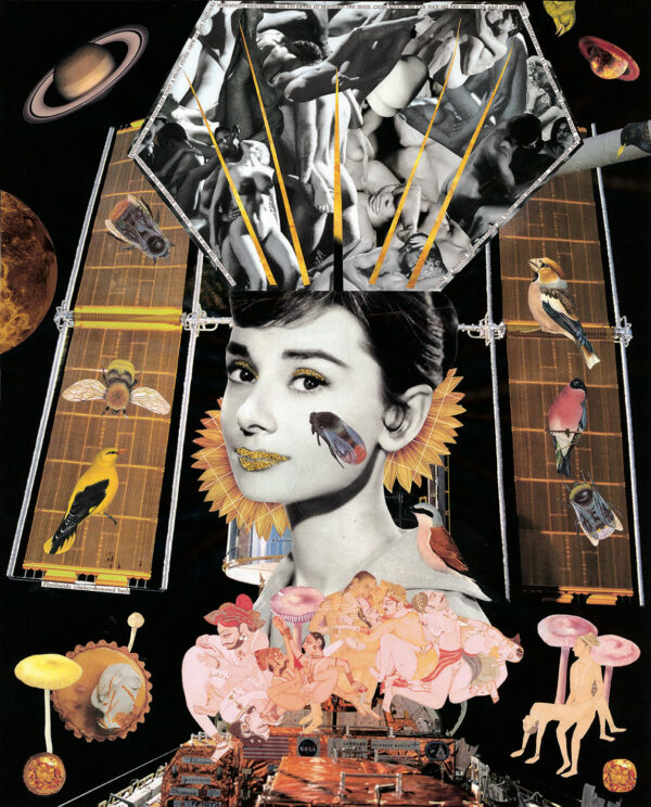 Orgy Hepburn Print by DiSect January 2021