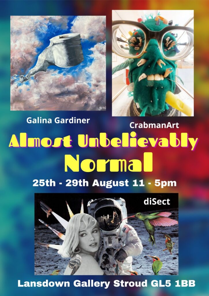 DiSect at the Anything but Normal Exhibition, Stroud, 20210825-29